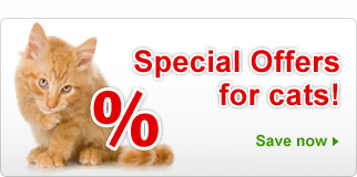 Special Offers: Cat Supplies & Accesssories