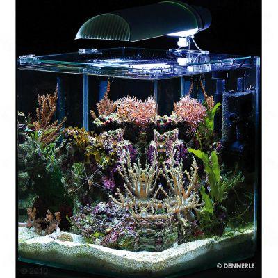 aquarium nano marinus cube complete plus 30 l prix avantageux chez zooplus. Black Bedroom Furniture Sets. Home Design Ideas