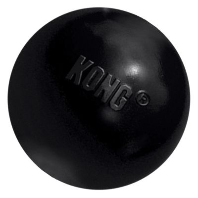 Balle KONG Extreme pour chien