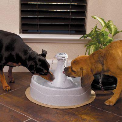 Bebedero fuente Drinkwell 360 de PetSafe