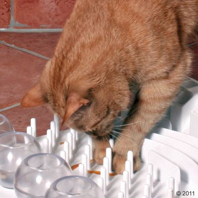 Играчка за котки Cat Activity Fun Board