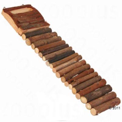 Échelle en bois pour rongeur