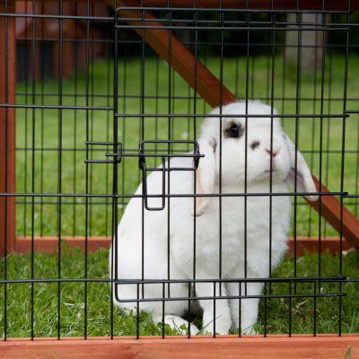 Clapier Outback Spécial + enclos pour rongeur et lapin
