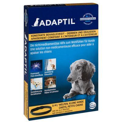 Collier apaisant ADAPTIL pour chien