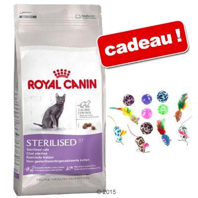 Croquettes Royal Canin 10 kg + lot de 12 jouets offert !