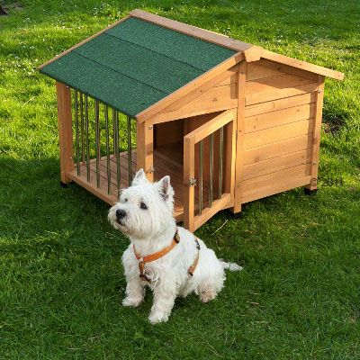 Cuccia per cani sylvan special zooplus - Canisette pour chien ...