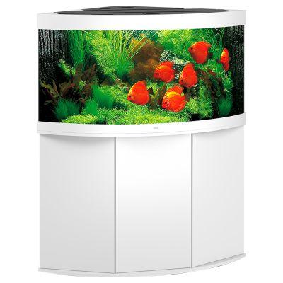 Ensemble aquarium sous meuble juwel trigon 350 - Aquarium 350 litres complet meuble et poissons ...