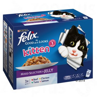 Felix Kitten As Good As It Looks