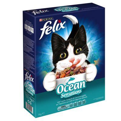 """""""Felix"""
