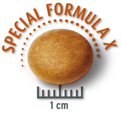 80 g Probiergröße Concept for Life Trockennahrung