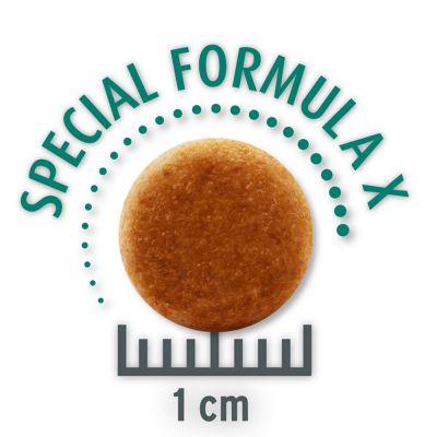 50 g Probiergröße Concept for Life Trockennahrung