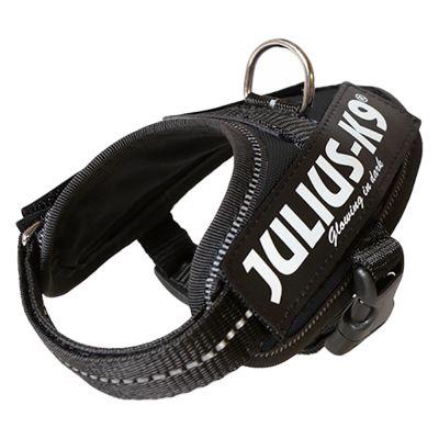 Harnais Julius-K9 IDC® Power, noir pour chien