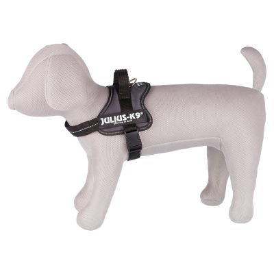 Harnais Julius-K9 Power, anthracite pour chien
