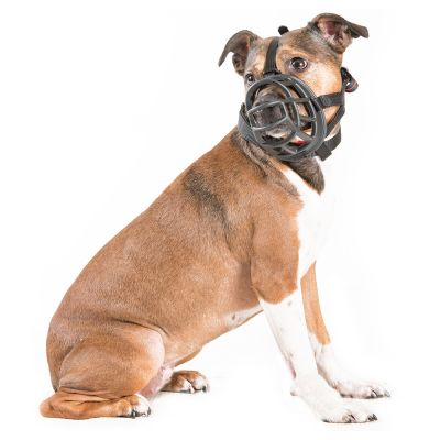 Kaganiec dla psa Baskerville Ultra