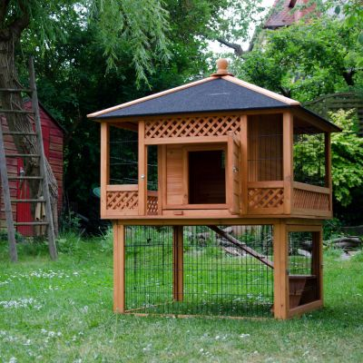 Kaninchenstall Outback Pagode mit Freigehege