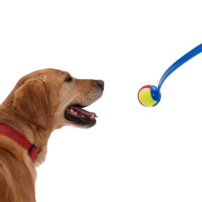 lanceur de balles de tennis pour chien - zooplus
