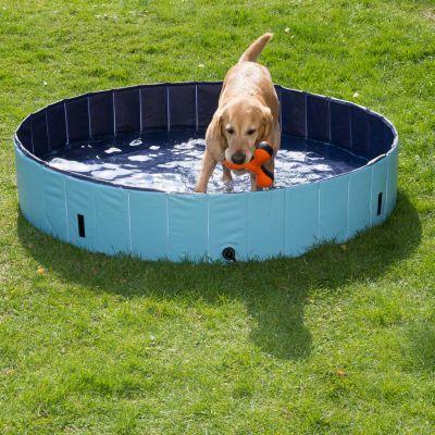 Piscina con cubierta para perros
