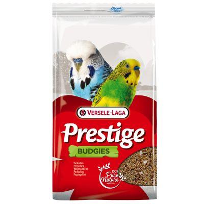 Prestige Wellensittich