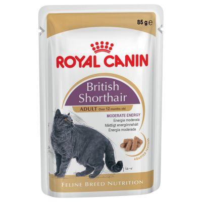 royal canin breed british shorthair g nstig bei zooplus. Black Bedroom Furniture Sets. Home Design Ideas