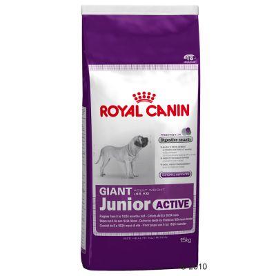 royal canin giant junior active great deals at. Black Bedroom Furniture Sets. Home Design Ideas
