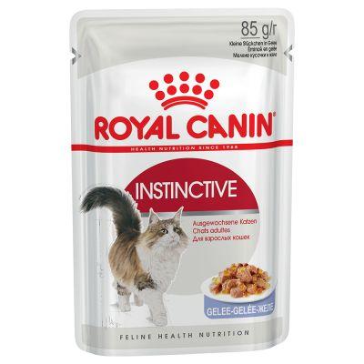 Royal canin gele ontlasting