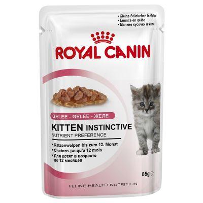 Royal Canin Kitten Instinctive w galarecie