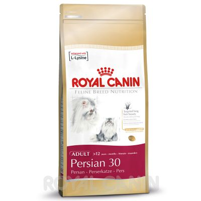 royal canin persian croquettes pour chat zooplus. Black Bedroom Furniture Sets. Home Design Ideas