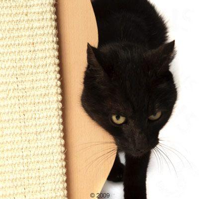 Tabla rascadora en forma de gato Trixie para gatos