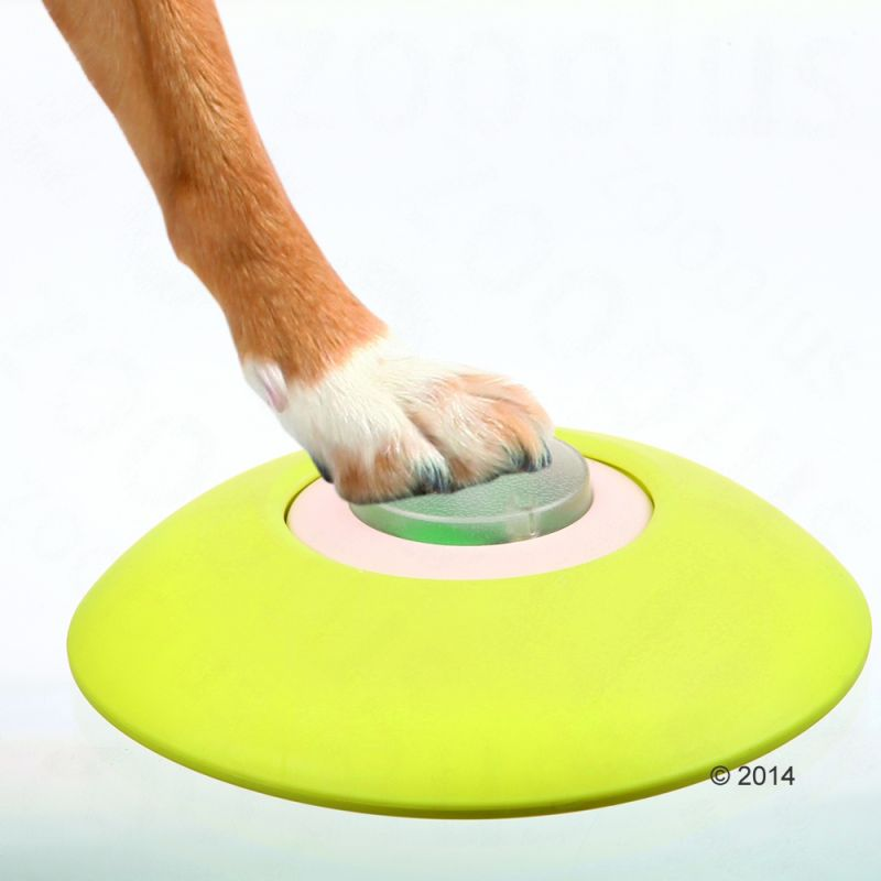 Toys For Trainers : Trixie dog activity memory trainer free p £ at zooplus