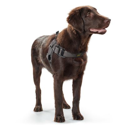 harnais-hunter-manoa-vario-quick-light-gris-pour-chien